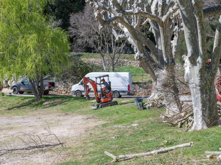 Mairie de Besse sur issole - élagage des platanes du lac