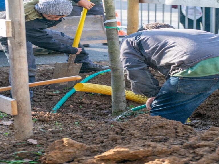 Mairie de besse sur issole - planatation d'arbres